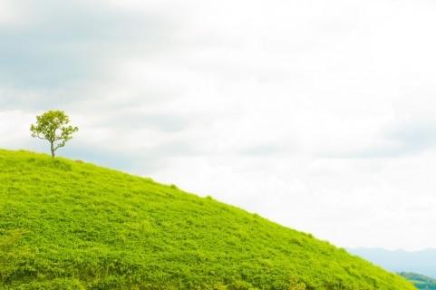 運命の愛を引き寄せる心の花嫁学校 斎藤芳乃のマリアージュスクール -pt13
